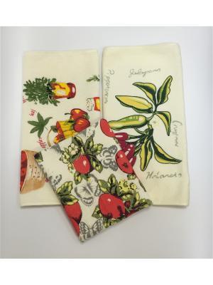 Комплект полотенец A and C Collection. Цвет: белый, зеленый, бледно-розовый