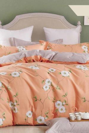 Постельное белье Евро, 50x70 Jardin. Цвет: оранжевый