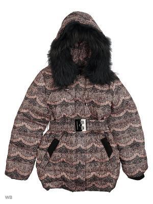 Куртки Arista. Цвет: черный, розовый