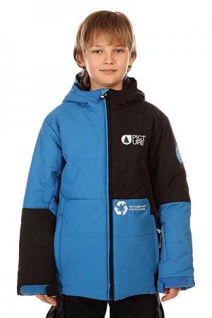 Куртка зимняя детская  Monster Blue Picture Organic. Цвет: черный,синий