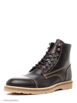 Ботинки Shoe the Bear. Цвет: коричневый