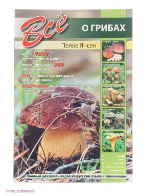 Все о грибах Издательство СЗКЭО. Цвет: зеленый