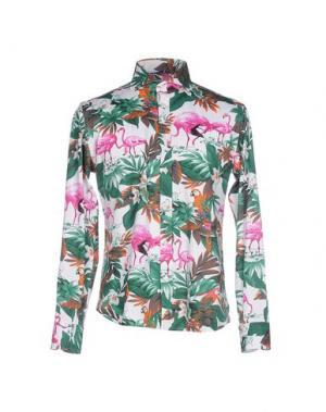 Pубашка BRANCACCIO C.. Цвет: зеленый
