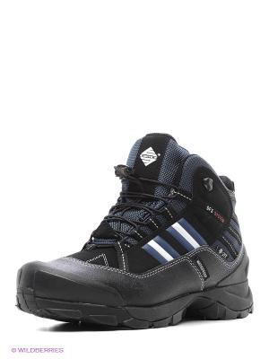 Ботинки EDITEX. Цвет: черный, синий