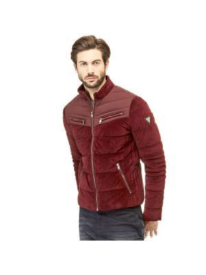 Куртка GUESS. Цвет: фиолетовый