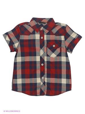 Рубашка Sisley Young. Цвет: бордовый, синий