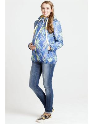 Куртка Modress. Цвет: синий, желтый, фиолетовый