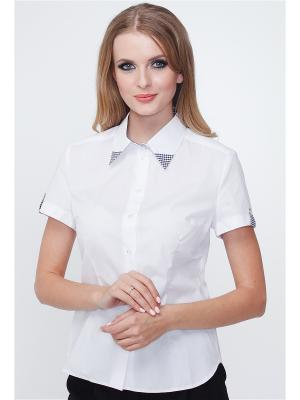 Блузка MARY MEA. Цвет: белый, черный