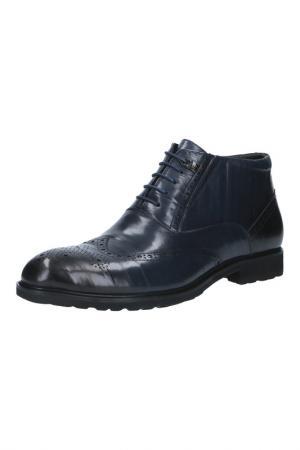 Ботинки Fred Farman. Цвет: синий