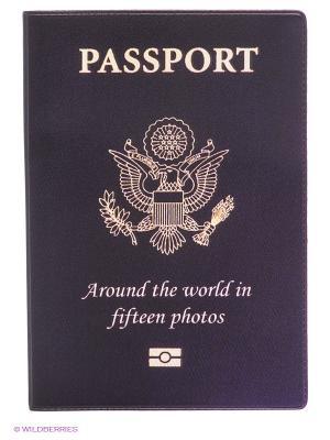 Обложка для паспорта PASSPORT Mitya Veselkov. Цвет: серый
