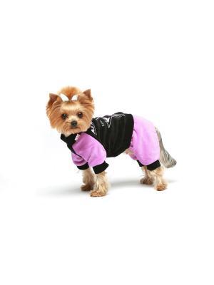 Спортивный костюм для собак Ай Да Пес. Цвет: фиолетовый