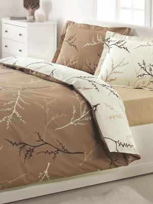 Комплект постельного белья OZDILEK. Цвет: коричневый, кремовый