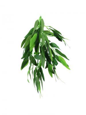 Растение Рускус 300мм. REPTI-ZOO. Цвет: зеленый
