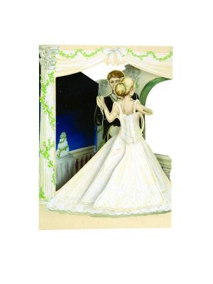 Объемная открытка  Свадьба Даринчи. Цвет: белый