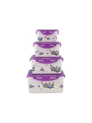 Набор контейнеров прямоугольных 4 пр.(2900 мл, 1850 1100мл, 680 мл) Фиолетовый PATRICIA. Цвет: фиолетовый
