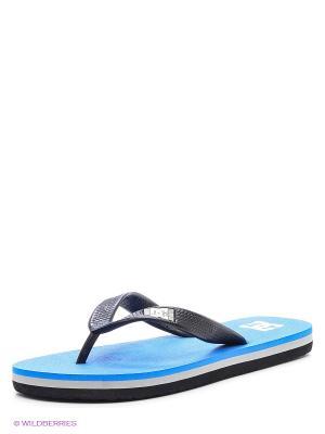 Шлепанцы DC Shoes. Цвет: голубой, черный