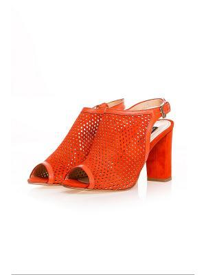 Босоножки Alberto Zago. Цвет: оранжевый