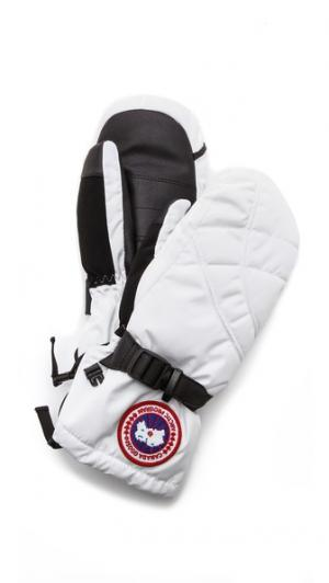 Down Mittens Canada Goose