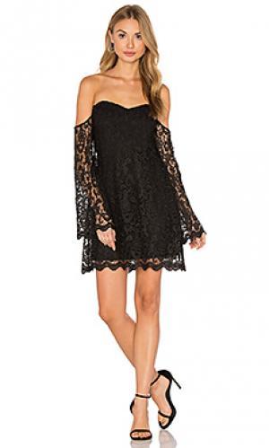 Мини платье antoinette Bardot. Цвет: черный