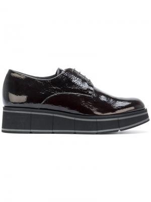 Туфли на шнуровке Paloma Barceló. Цвет: чёрный