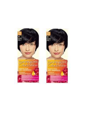 Краска-уход для волос Color&Shine без аммиака, 2.10, Черничный черный, 2 шт. Garnier. Цвет: черный