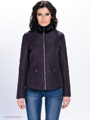 Куртка QUIOSQUE. Цвет: сливовый