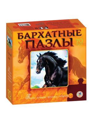 Бархатные пазлы. Вороной конь /черный бархат/ Дрофа-Медиа. Цвет: оранжевый