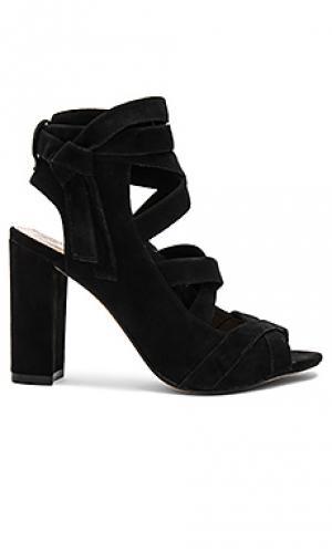 Туфли на каблуке sammson Vince Camuto. Цвет: черный