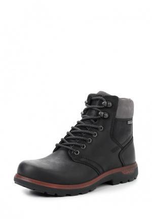 Ботинки WHISTLER Ecco. Цвет: черный