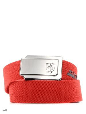 Ремень Ferrari Fanwear Belt PUMA. Цвет: красный