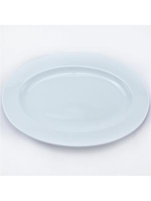 Блюдо овальное 35 см 1/12 Royal Porcelain. Цвет: белый