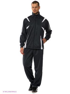 Спортивный костюм ADDIC. Цвет: темно-серый