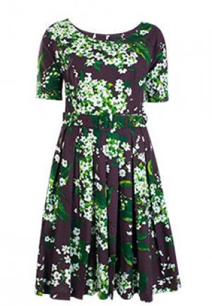 Платье SAMANTHA SUNG. Цвет: коричневый