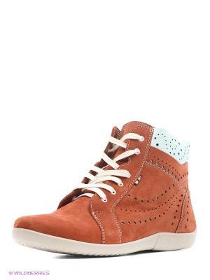 Ботинки Marko. Цвет: терракотовый