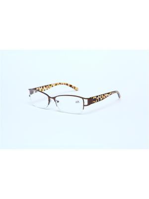 Очки корригирующие (для чтения)  302 Fabia Monti +2.50 PROFFI. Цвет: коричневый