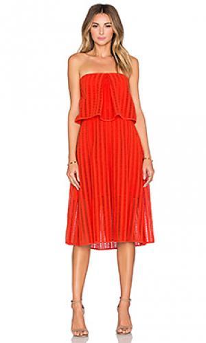 Платье graciela SAYLOR. Цвет: красный