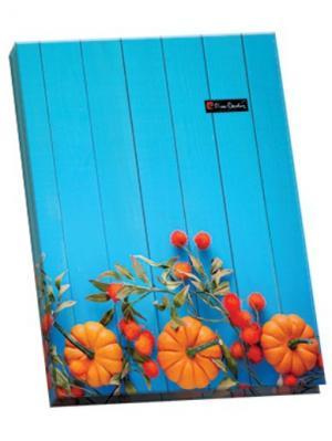 Папка ламинированная Provence с металлическим прижимом. Pierre Cardin. Цвет: голубой, оранжевый
