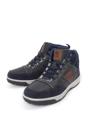 Ботинки CROSBY. Цвет: синий