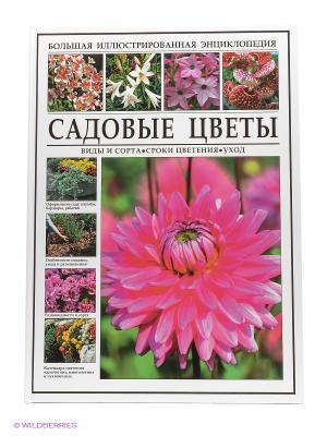 БИЭ. Садовые цветы.Виды и сорта.Сроки цветения.Уход Издательство СЗКЭО. Цвет: белый