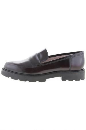 Shoes Sessa. Цвет: brown
