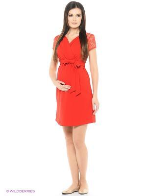 Платье для беременных ФЭСТ 1-197525А/красный