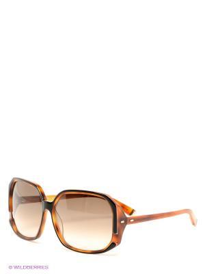 Солнцезащитные очки Dsquared. Цвет: коричневый