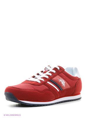 Кроссовки U.S. Polo Assn.. Цвет: бордовый