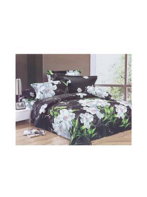 Комплект постельного белья 6 предметов HAMRAN. Цвет: черный, белый, зеленый