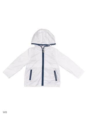 Куртка (Ветровка) Button Blue. Цвет: белый