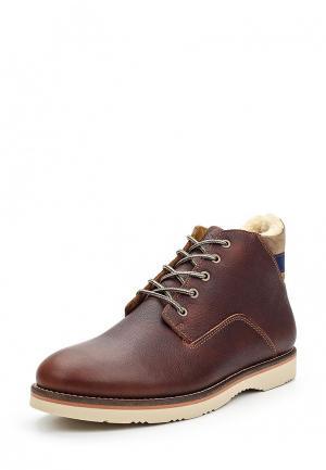 Ботинки Gant. Цвет: коричневый