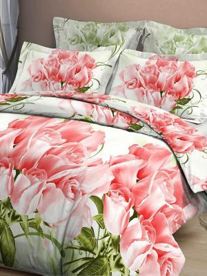 Комплект постельного белья Letto. Цвет: зеленый, бежевый, красный