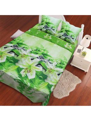 Постельное белье Lilly  2,0 сп. Amore Mio. Цвет: зеленый