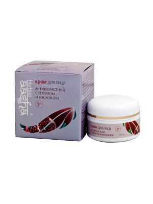 Крем для лица Антивозрастной с гранатом и маслом Ши Aasha Herbals. Цвет: молочный