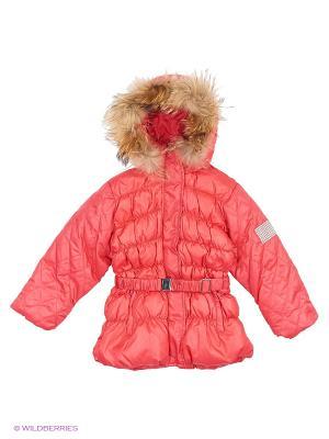 Куртка Baby Line. Цвет: коралловый